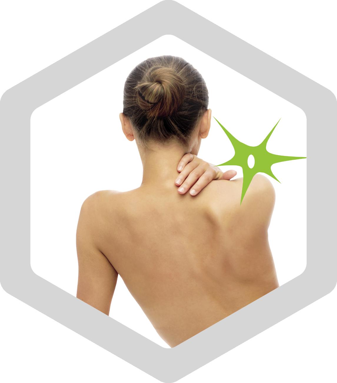 Icon Rueckentraining | EMA Fitness bixpack
