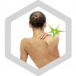 ruecken | EMA Fitness bixpack